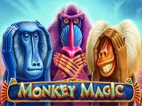 Monkey Magic 1цшт